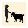 case-study-little-farm-thumb